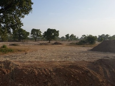 23rd November 2015 Garu Hospital Vegetation Strip Progress